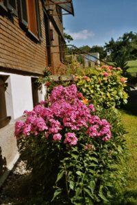 Haus mit Blumen; geschindelt
